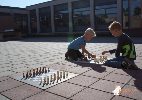 Chess Tile Natural Concrete