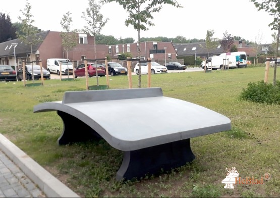 Foot Volleyball Table Anthracite-Concrete