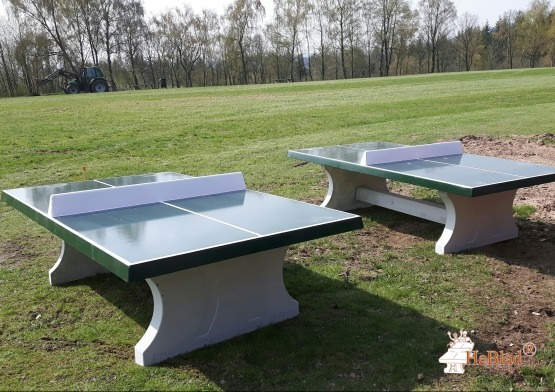 Concrete Ping-pong table green