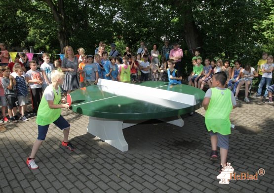 Concrete Ping-pong table green, round